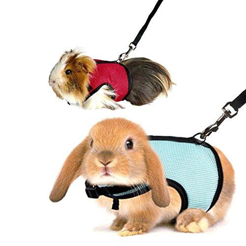 UxradG Hamster Kaninchen Geschirr Leine, Mesh Walking Running Leine Seil, für Frettchen Meerschweinchen Klein Animal Pet Rot Rosa Blau (Blau Frettchen)