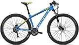 Focus Whistler Evo 29R Twentyniner Mountain Bike 2016 (Torinoblue matt, S/42cm)