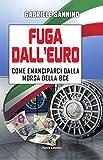 Fuga dall'Euro: Come emanciparci dalla morsa della BCE