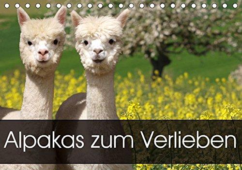 Alpakas zum Verlieben (Tischkalender 2018 DIN A5 quer): Alpakas - Tiere, in die man sich einfach verliebt (Monatskalender, 14 Seiten ) (CALVENDO Tiere) [Kalender] [Apr 01, 2017] Rentschler, Heidi