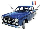 Party Pro–Matratzenschonbezüge Autospiegel Frankreich, 333113