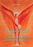 Engel sucht Lichtarbeiter: Aus dem Tagebuch eines Engelmediums