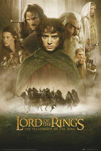 Empire 498670 Poster Il signore degli anelli, 61 x 91,5 cm