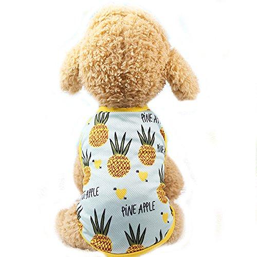 BBEART Haustierkleidung, süßes Sommer-T-Shirt für Hunde und Katzen, für kleine Hunde und Katzen, Pineapple T-Shirt, S-Back Length - Meerschweinchen Tragen Kostüm