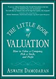 The Little Book of Valuation: How to Value a Company, Pick a Stock and Profit (Little Books. Big Profits)