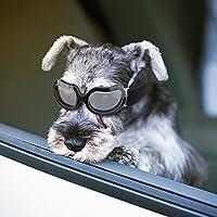SEALEN - Gafas de Sol pequeñas para Perro, 2018, para protección UV, Gafas de Sol con Banda Ajustable para Perros pequeños y medianos