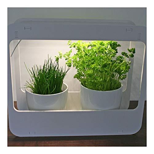 LED Designer Mini Gewächshaus weiß