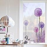 Pflanze blumen fensteraufkleber,Glas aufkleber für badezimmer satiniertem fenster aufkleber leicht deckend schattierung löwenzahn wandsticker-A 45x80cm(18x31inch)