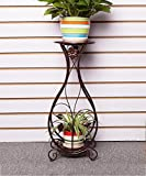 Shelf in Living Room Bedroom Kitchen Plant Stand Iron Creative Flower Pot Shelf Balcony Living Room 2-tier Flower Rack Decoration Rack YYJRR-Corner Shelves ( Color : Brass , Size : 26*23*80cm )