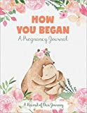 How You Began: A Pregnancy Journal: A Record of Our Journey