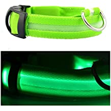 E panda Collar Luminoso Perro-Alta Iluminación/Pila Recargable USB/Nylon Resistente Regulable/Seguridad-Collar Led Luz para Perros Grandes y Pequeños