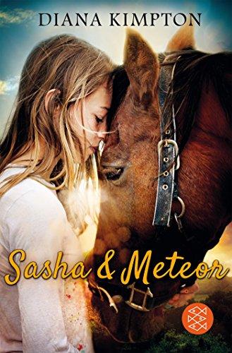 sasha-meteor