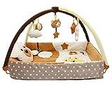 Krabbeldecke/Nest mit Spielbogen (braun)