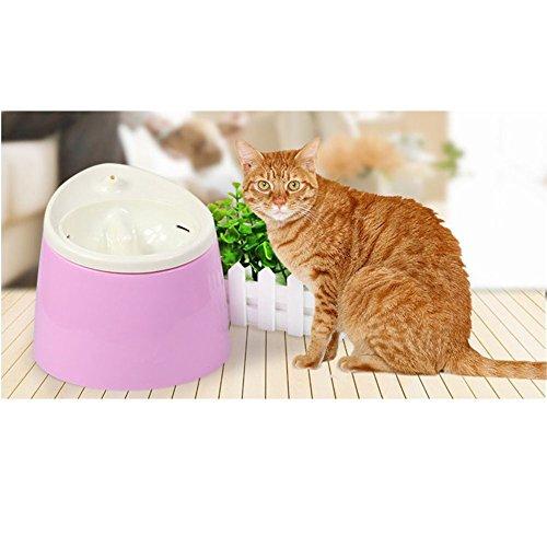 LanLan Dispensador automático para Mascotas, dispensador Circular, dispensador de oxígeno para Gatos