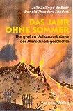 Das Jahr ohne Sommer: Die grossen Vulkanausbrüche der Menschheitsgeschichte und ihre Folgen - Jelle Zeilinga de Boer