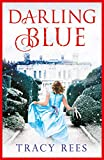 Darling Blue: the gorgeous and gripping tale of family, love and acceptance (English Edition)