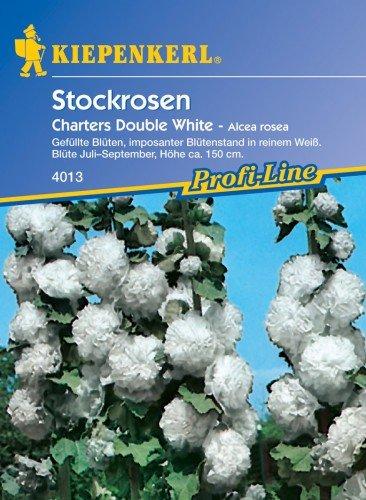 Stockrose Sperli Blumensamen