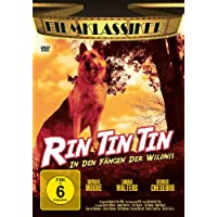 Rin Tin Tin: In den Fängen der Wildnis
