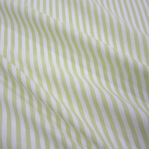 Bügel Gestreifter Kostüm - Stoff Meterware Bauernstreifen hellgrün weiß Streifen gestreift Landhaus Gardine