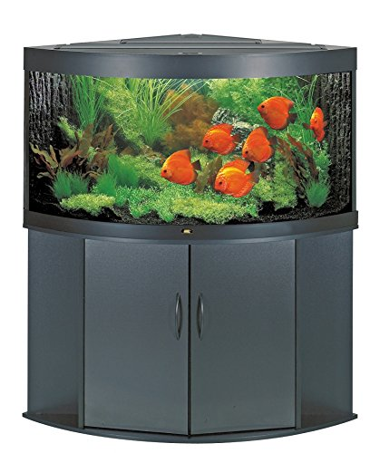 Juwel Aquarium 73300 Unterschrank Trigon 350 SB, schwarz