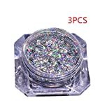 Coolster 12 Boxen 12 Farben Box Chrome Pigment DIY Nail Art Nail Make-up Glitzer Shinning Pulver & mit Schwamm Stick (3PCs Mehrfarbig)