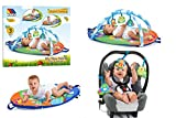 Molto Baby Toddler Activity Gym Mat Activity Gym Travel Discovery Gym Play Mat - Best Reviews Guide