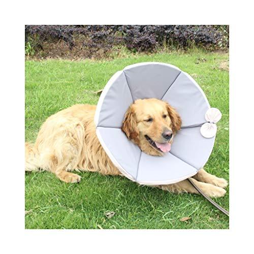 nd Pet E-Collar Elizabethan Collars Recovery Pet Cone Für Katzen Und Kleine Hunde Atmungsaktive Soft Edge (Farbe : Gray, größe : 2XL) ()
