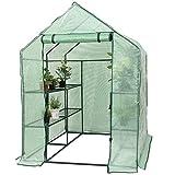COSTWAY Serra da giardino in alluminio serra telaio freddo per piante, verde, 143 x 143 x 195 cm