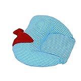 #8: Kuber Industries Mustard Seeds (Rai) Pillow Apple Shape (Cotton),Sky Blue -