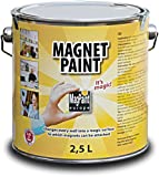 Best Applied Magnets Neodymium Magnets - MagPaint® Magnetic Paint by MagPaint 2.5 litre Review