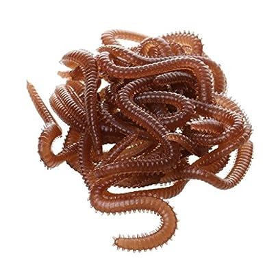 Da.Wa 3x Artificial Sea Worms Simulation Fishing Lure Tackle Soft Bait Tool from Da.Wa
