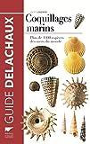 Coquillages marins. Plus de 1000 espèces des mers