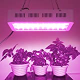 LED Pflanzenlampen 20000 lm AC 85-265 V, Befied Grow Lampe UV+ IR Gewächshaus Vollspektrum Pflanzen Veg & Blume Wasserfest Rot Blau300/600/1000W (600w)