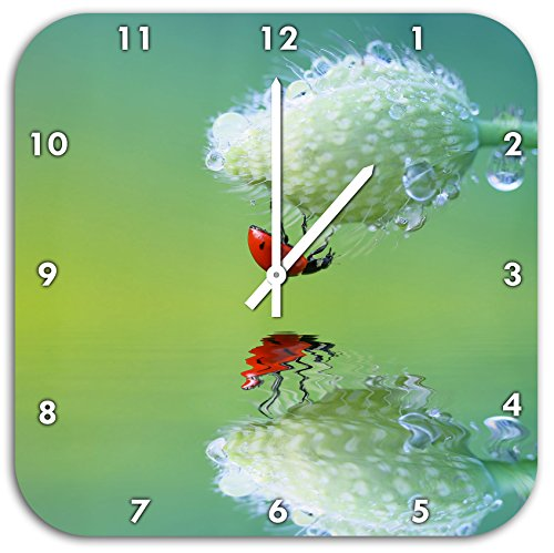 Rouge Coccinelle accroché à l'envers sur un coquelicot, horloge murale diamètre 48cm avec le blanc a les mains et le visage, des objets de décoration, Designuhr, composite aluminium très agréable pour salon, bureau