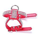 PETCUTE Hundehalsband Diamant Halsband Kristall Leder Hund Hundehalsband Halsbänder Bling