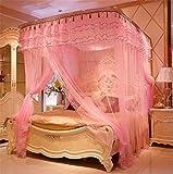 WanJiaMen'Shop Drei Tür Prinzessin Moskitonetz Doppelbett Vorhänge Schlafvorhang Bett Baldachin Net Full Königin King Size Net, Rosa, 2x2.2 M