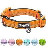 Blueberry Pet 2,5cm L 3M Reflektierendes Neopren-Gepolstertes Hundehalsband in Orange, Groβe Halsbänder für Hunde