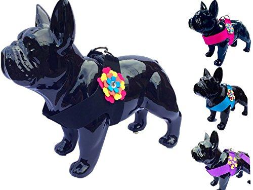 Lushpetz - Arnés para Perro