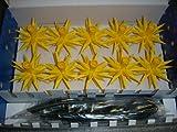 Sternkette A1s gelb (Parallelschaltung+Trafo) für Innen-und Außenbereich