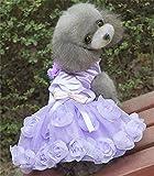 2016 Neues Design kleines Haustier Hund Hochzeit Kleid Katze Hund Prinzessin Rock Hund Kleidung 3D Rose & Pearl Hund Tutu Kleid Sommer Pink & Lila, Lila, L