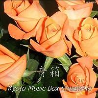 The Merry-go-round of (Go Round Box Musica)