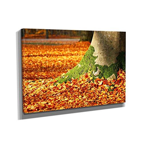 autumn-leaves-kunstdruck-auf-leinwand-20x30-cm-zum-verschonern-ihrer-wohnung-verschiedene-formate-au