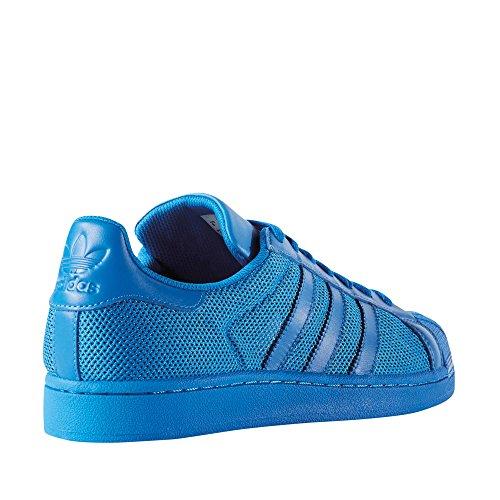 adidas Superstar, Sneakers basses homme Bleu