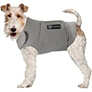 American Kennel Club Calm Anti-Anxiety and Stress Relief Coat for Dogs, X-Large,Grey
