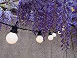 Guirlande Guinguette Lumineuse Extérieure I 20 Lampes Blanches LED Blanc Chaud I 6m de Long I Waterproof Indice IP44 I Déco Terrasse & Jardin & Patio - ELUME