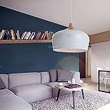 RBB Personalisierte dekorative Beleuchtung Loft American Chandelier Art Vogel Anhänger, personalisierte Restaurant, Hotel Bar und Wohnzimmer Schlafzimmer Beleuchtung Schmiedeeisen Kronleuchter