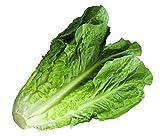 Best Lettuces - Fresh Lettuce, Romaine, 1 Piece Review