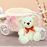 Maasha Cycle Shape Flower Vase With Cute Teddy Bear Fancy Home Decorative Items Showpieces For Home Decor/Gifting Office Interior Decoration Items Kids Birthday Return Gifts Sets Decoration Items