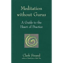 Meditation without Gurus: Meditation without Gurus