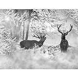 Fototapete Winter Elche 396 x 280 cm Vlies Wand Tapete Wohnzimmer Schlafzimmer Büro Flur Dekoration Wandbilder XXL Moderne Wanddeko - 100% MADE IN GERMANY - Schnee Grau Runa Tapeten 9212012c